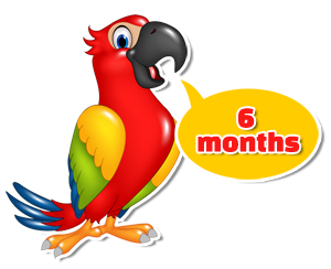 speech therapy six months